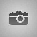 Vitomir, Gojak, Adobe, Captivate, Graphic, Design, WordPress